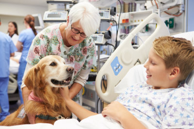 Therapy Dog Visiting Happy Young Male Patient In Hospital